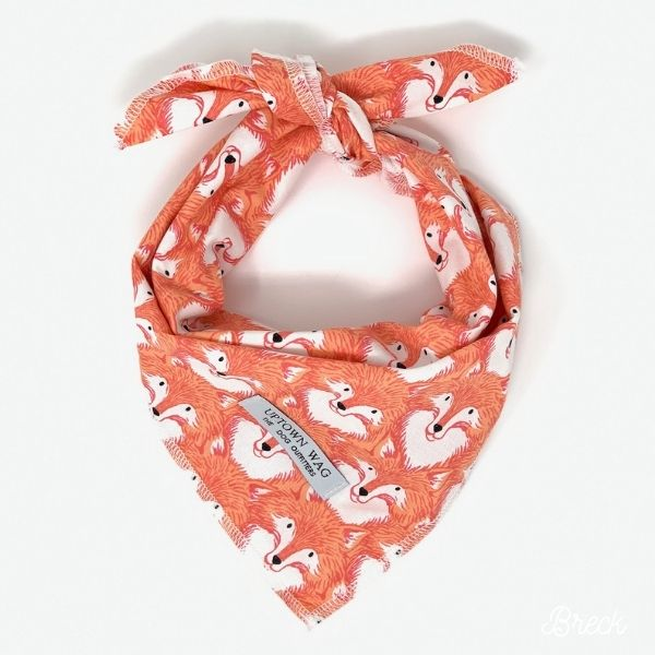 fox print dog bandana
