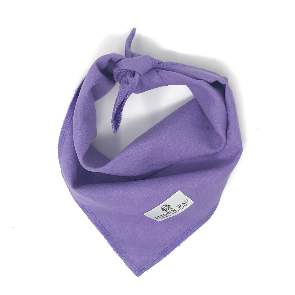 TCU dog bandana