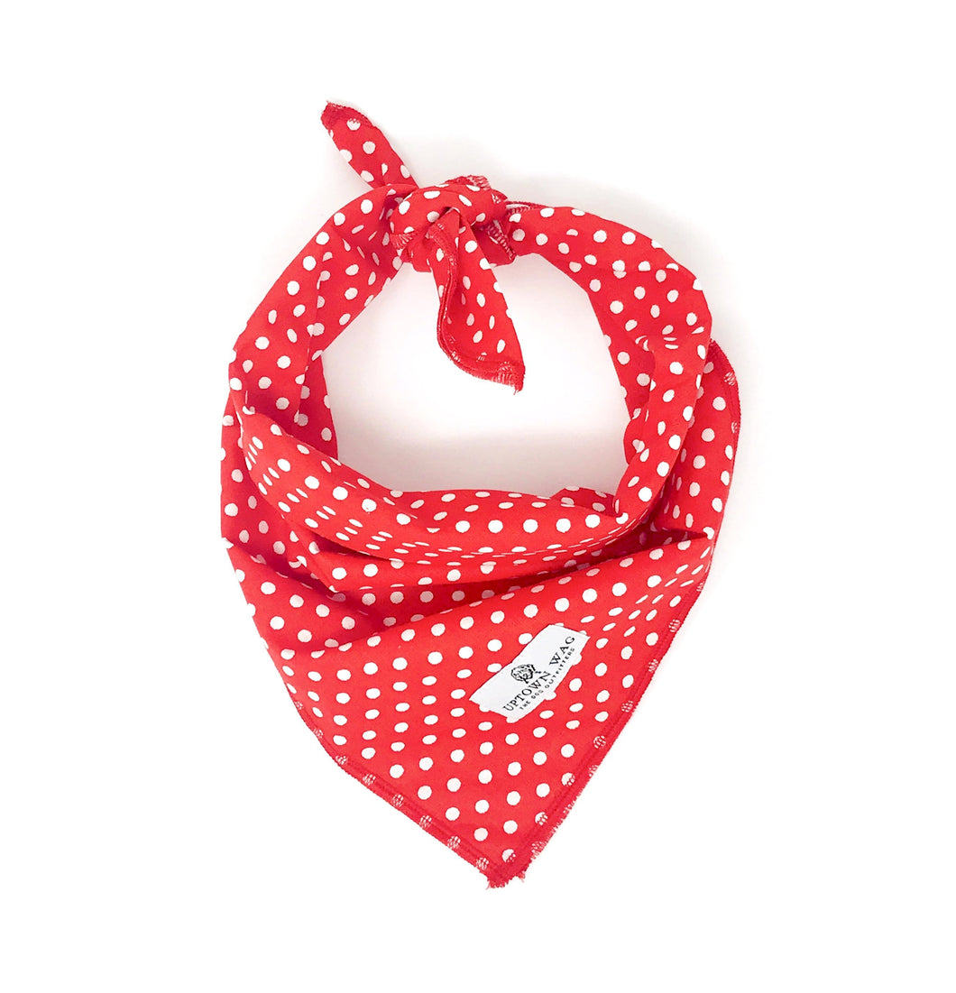 red polka dots dog bandana