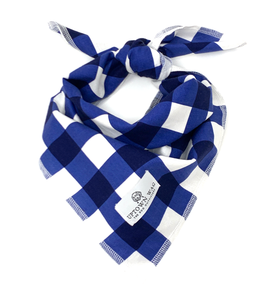 oxford blue check dog bandana