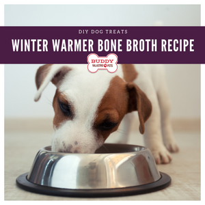 Cold Day Warmer - Bone Broth for Dogs