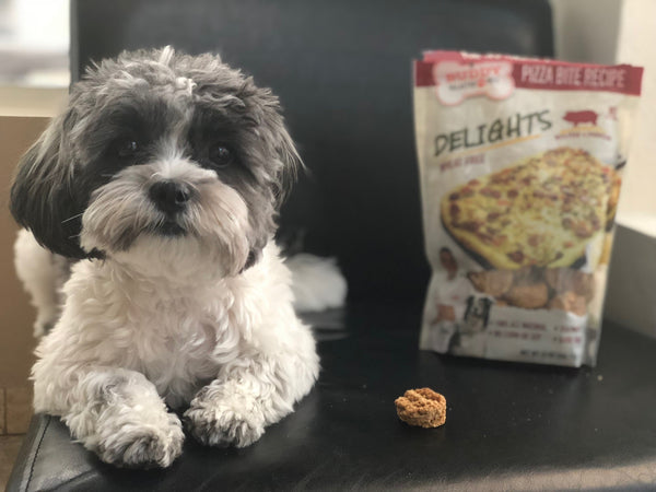 Pizza Bite Recipe Dog Treats