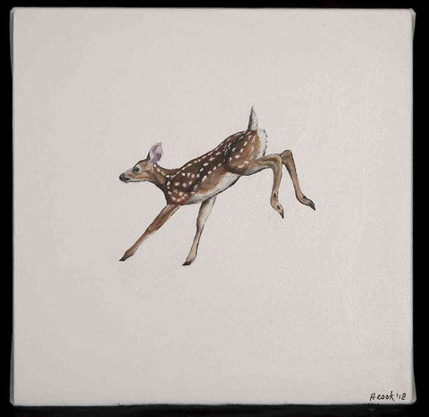 Fawn 2018 Heather Cook