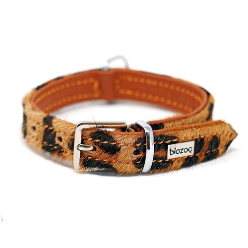 Animal Print Leather Collar-Collar-Biozoo-25 x 1,5 cm-Amazonia-Biozoopets