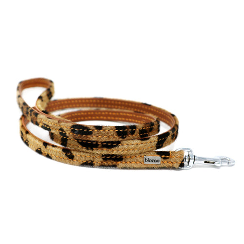 Animal Print Leather Lead-Leash-Biozoo-Amazonia-Biozoopets
