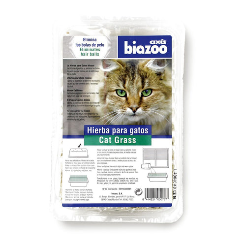 Cat grass-Accessories-Biozoo-Biozoopets