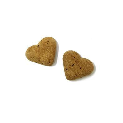 Grain-free turkey & cranberry hearts 500g-Snacks-Biozoo-500-Biozoopets