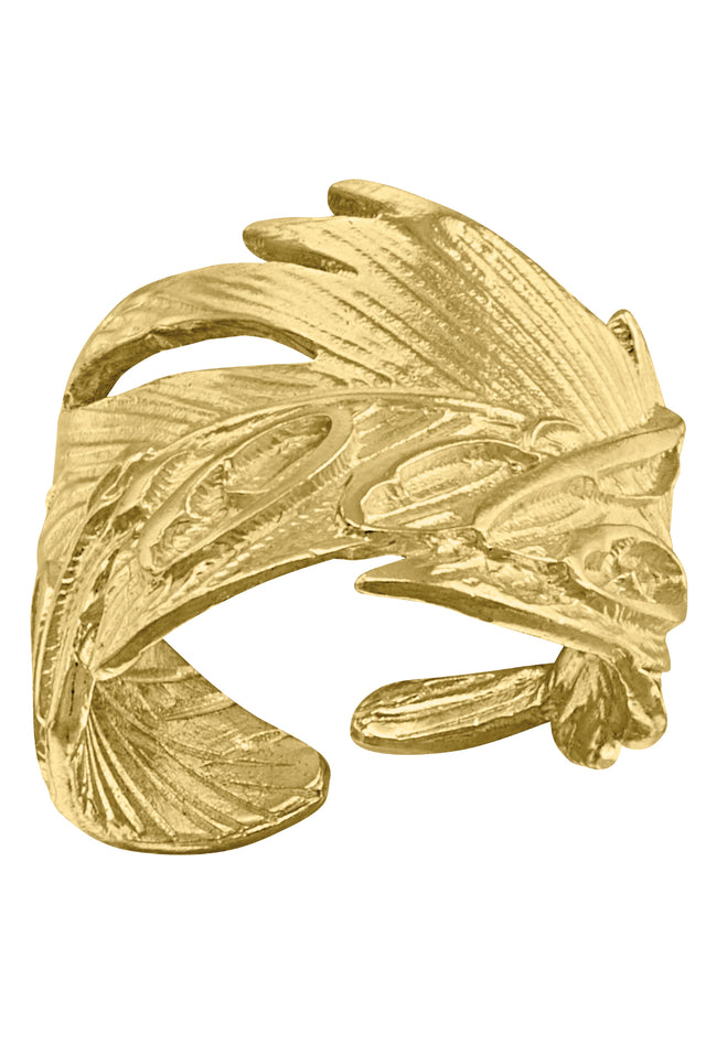 Anillo Pluma Native
