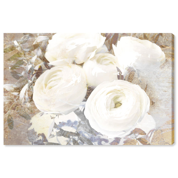 'Serving Ranunculus' Canvas Art - PoppyLy