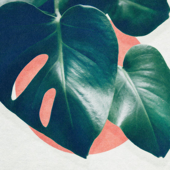 Monstera I by Leemo