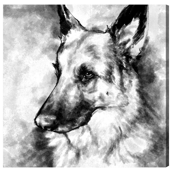 German Shepherd - PoppyLy