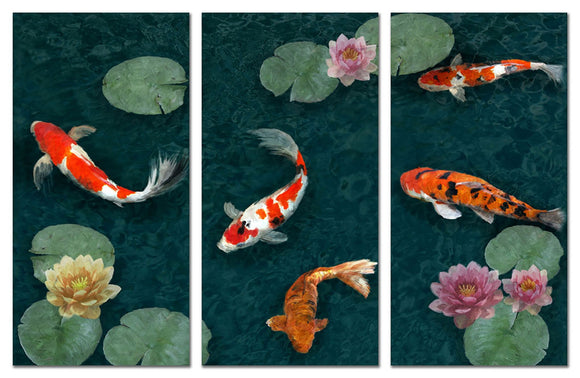 Small Koi Pond (set of 3) - PoppyLy