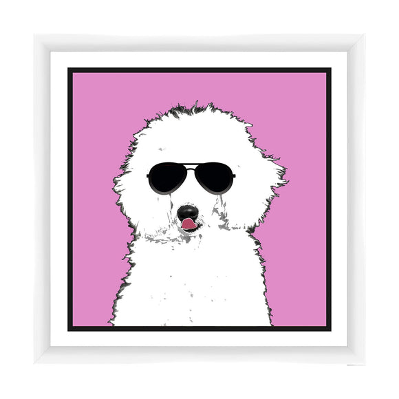 I'm a Cool Poodle - PoppyLy