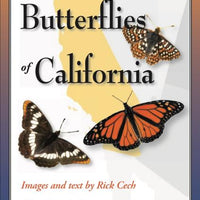 Folding Guide - Common Butterflies of California