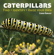 "Chris Earley's ""Caterpillars: Find - Identify - Raise Your Own"" Book"