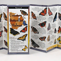 Folding Guide - Common Butterflies of the Midwest