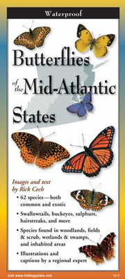 Folding Guide - Butterflies of the Mid-Atlantic & South-Central States