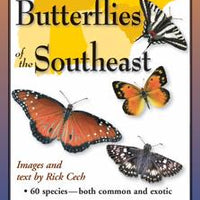Folding Guide - Common Butterflies of the Southeast