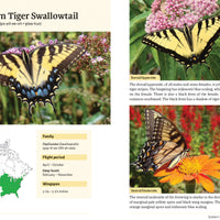 Brenda Dziedzic's 'Butterflies in the Garden' Book