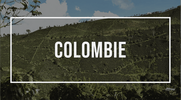 Amérique Latine : la Colombie