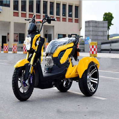 New Electric tricycle Double Shuttle Three-wheeled Electric Vehicle 60V 1000W - BC&ACI