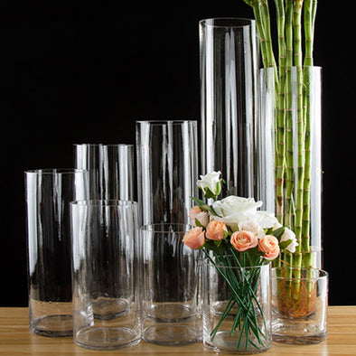 European style transparent Clear Tabletop tall Glass Vase Bottle Terrarium Hydroponic Container - BC&ACI