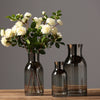 Modern glass vase Crafts terrarium glass containers Tabletop  flower vase - BC&ACI