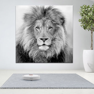 RELIABLI Wall Decorative Painting Black and White Lion Animal Poster Print Wall Picture - BC&ACI