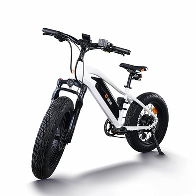yadea electric assisted bicycle e-bike mountain bike 20 inch fat tyre - BC&ACI