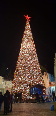 christmas tree in nazareth with paz creations