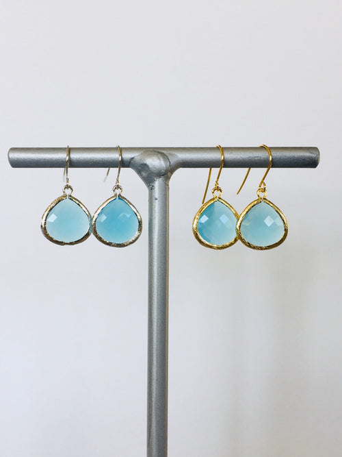 Ocean Gem Fish Hook Earring