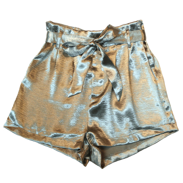Secret Satin Shorts- Silver- SL8318-SIL