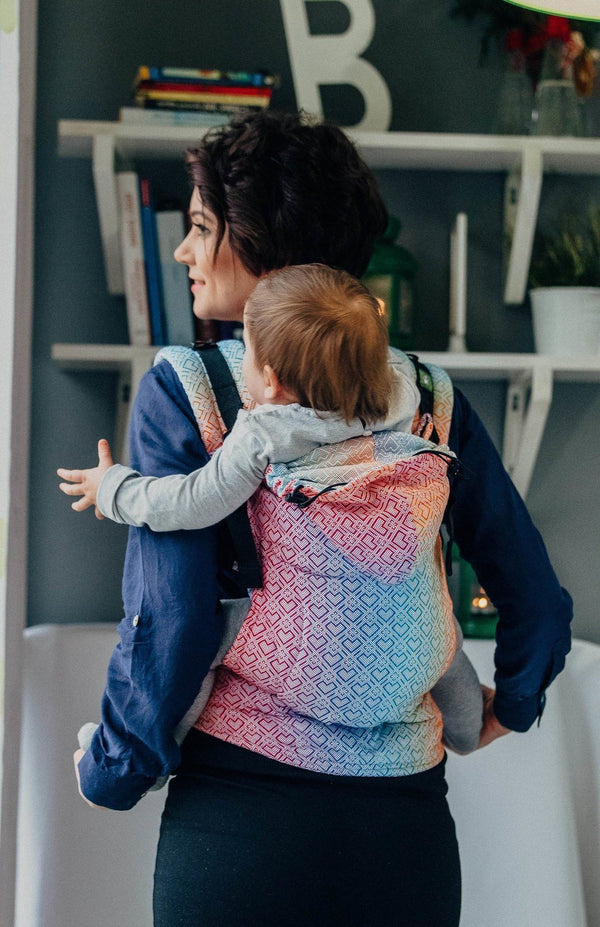 Baby Carriers Canada Lenny Lamb Big Love Rainbow Ergonomic Soft Structured Carrier.jpg
