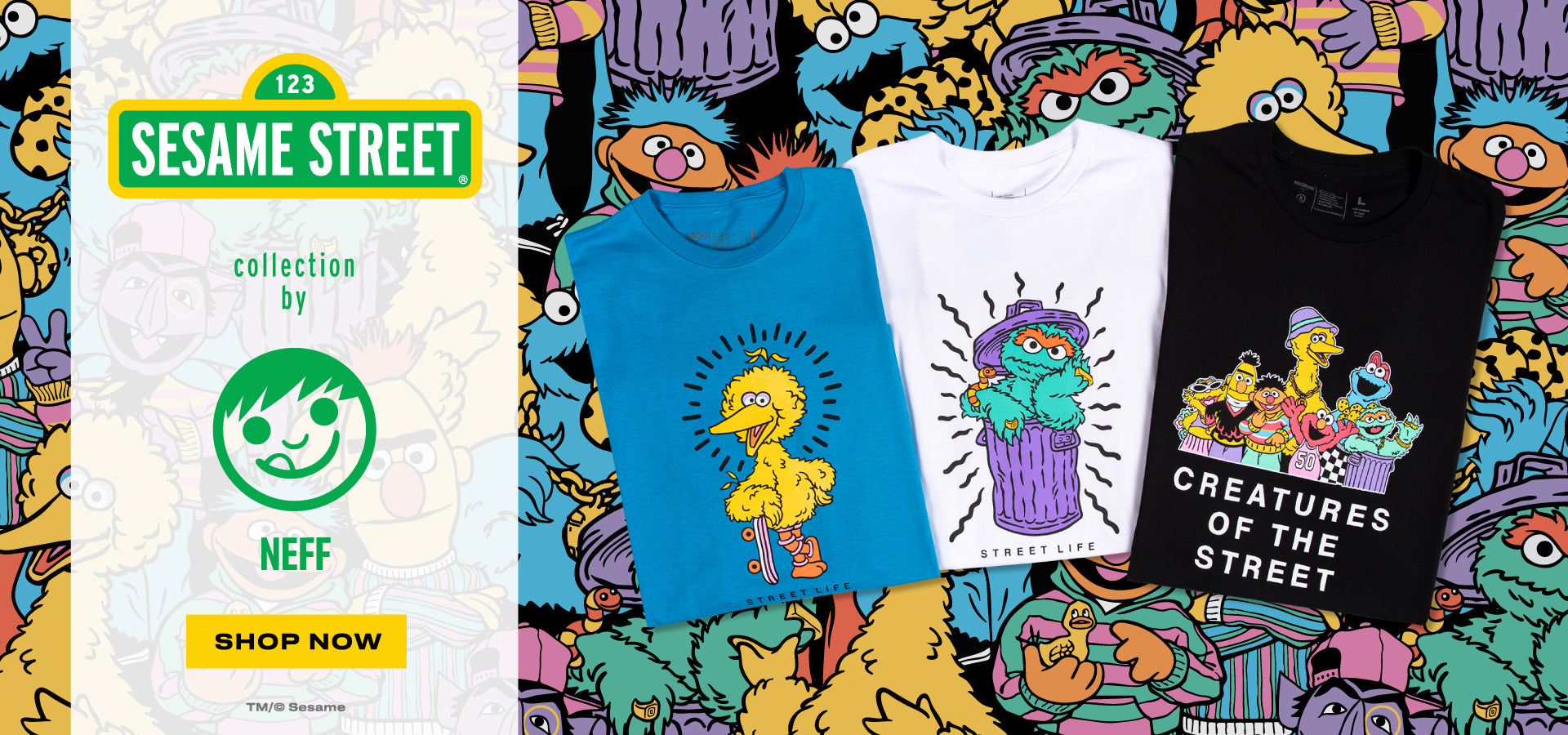 SESAME STREET COLLABORATION