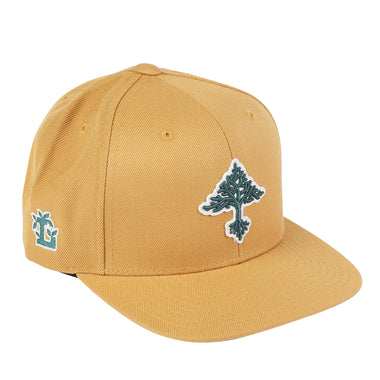 72246a61991 Grow Trees Snap Back Hat
