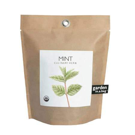 Mint Garden in a Bag