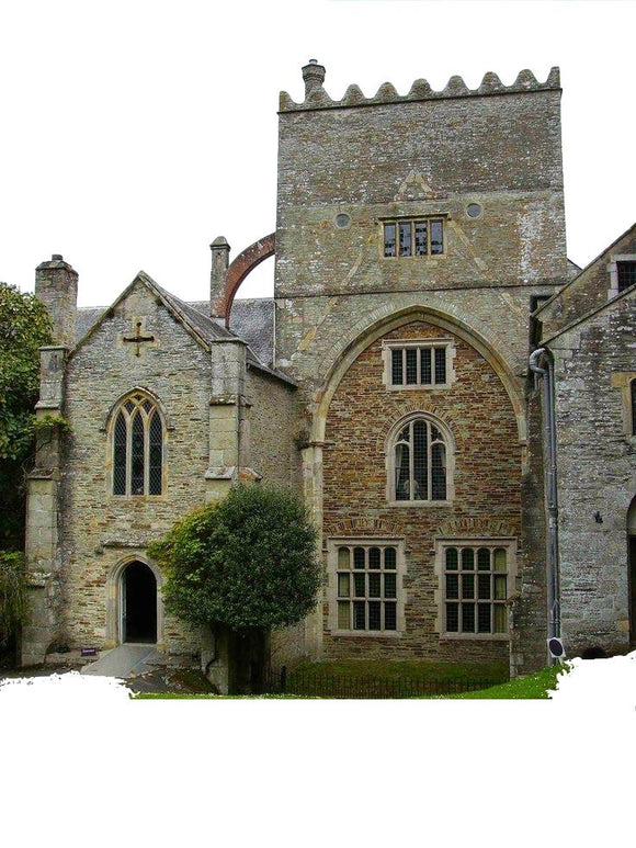 Buckland Abbey wood