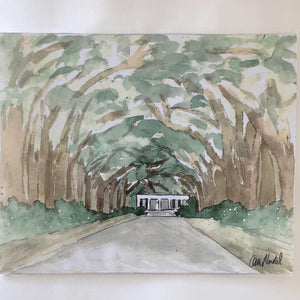 Avenue Of The Oaks Print