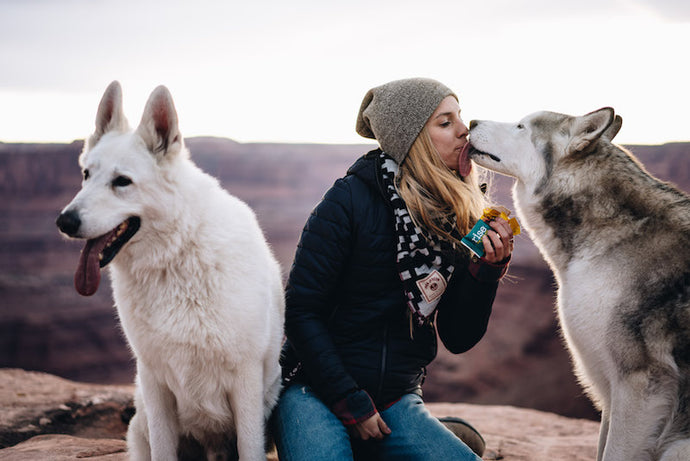 Rise Bar x Loki the Wolf Dog Epic Giveaway