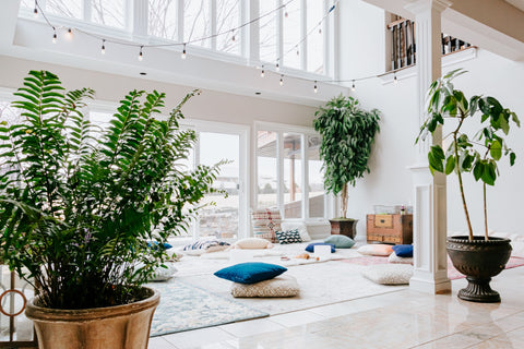 Large space with plants and pillows