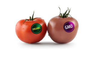 organic-vs-gmo-tomatoes-rise-bar