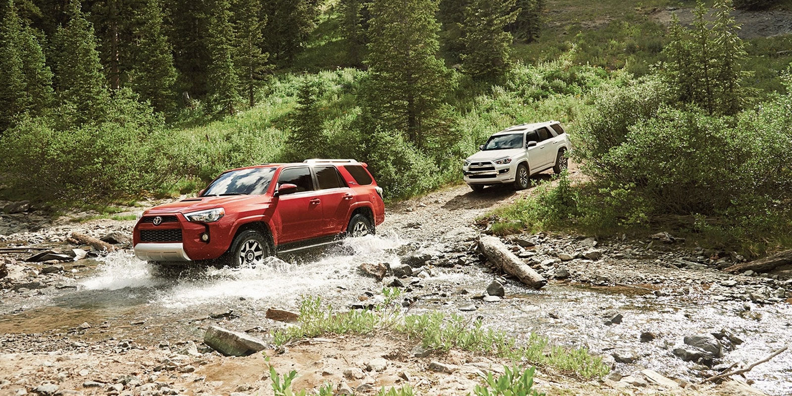 Toyota 4Runner Shock Buying Guide