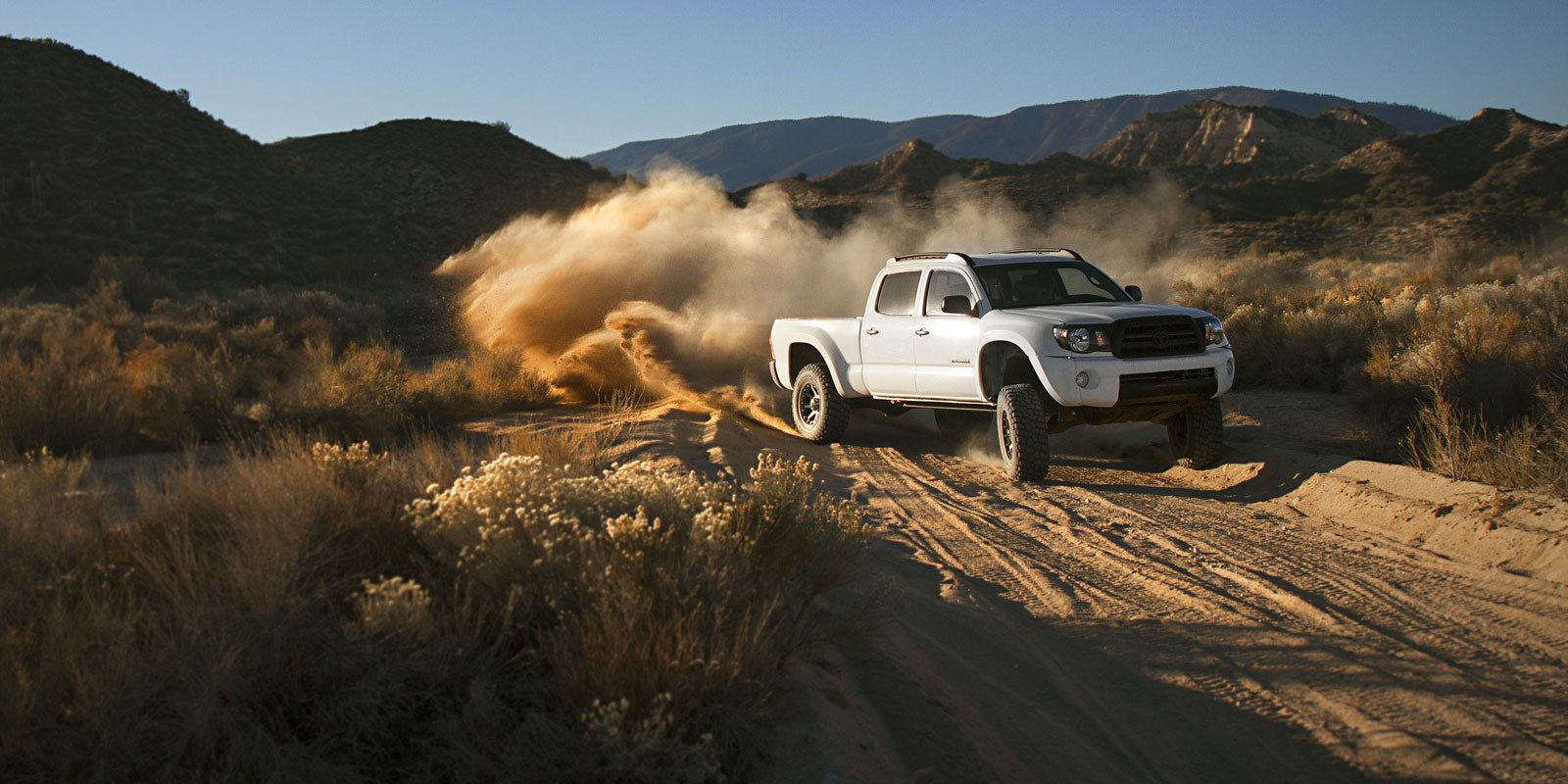Toyota Tacoma Shock Buying Guide