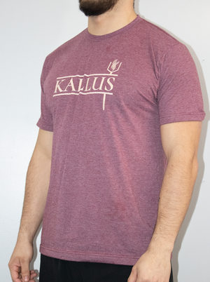 The Basic Tee - Burgundy