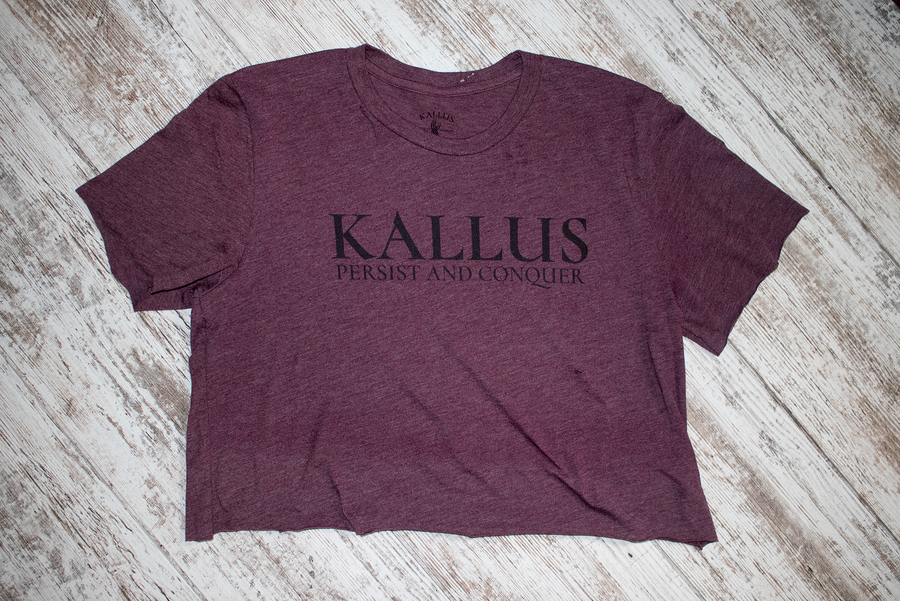 #01 Hand Cropped and Distressed Tee - Heather Maroon