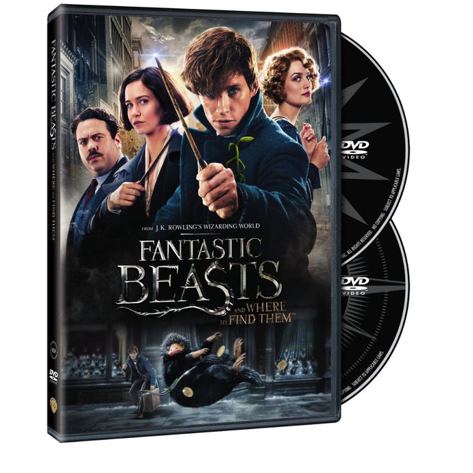 Fantastic Beasts and Where to Find Them (Special Edition) (DVD)