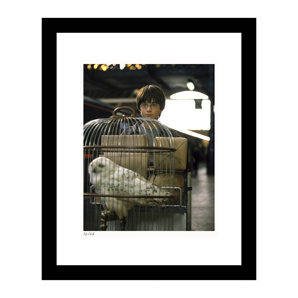 Harry Potter at Platform 9 3/4 Framed Print from Harry Potter and the Sorcerer's Stone