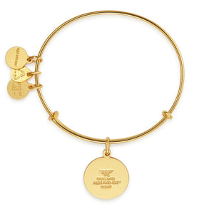 Additional image of ALEX AND ANI Wonder Woman Gold Charm Bangle