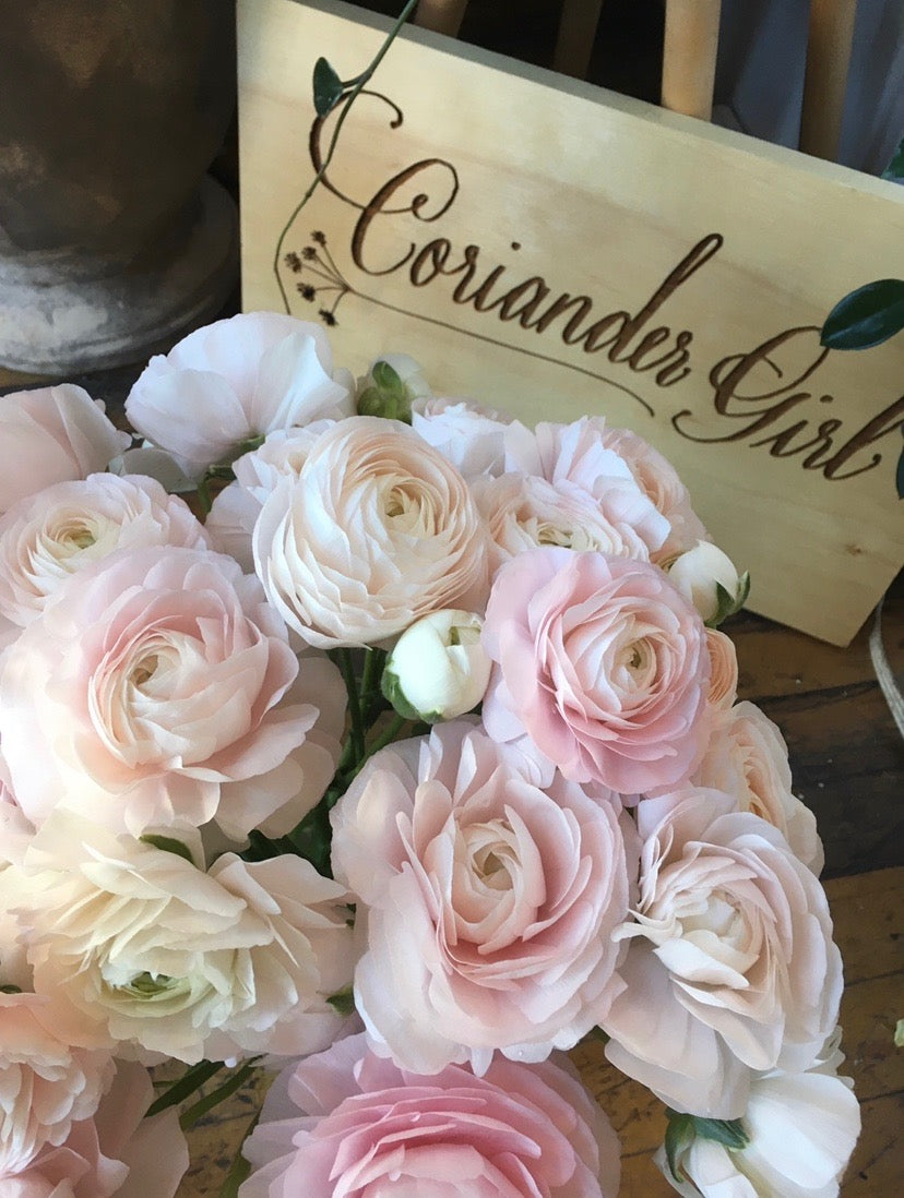 5 Stem - County Ranunculus Bundle