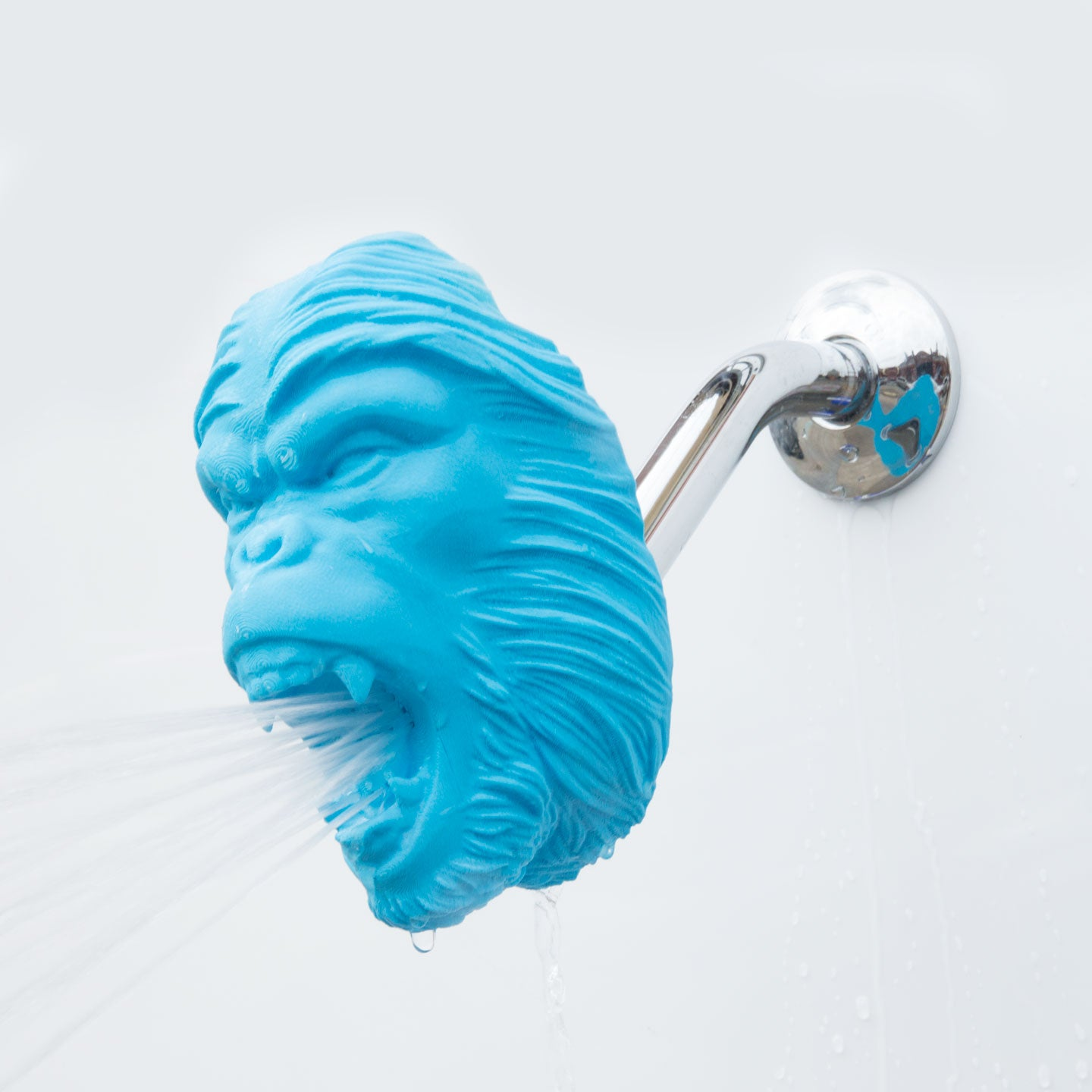 Monkey Showerhead